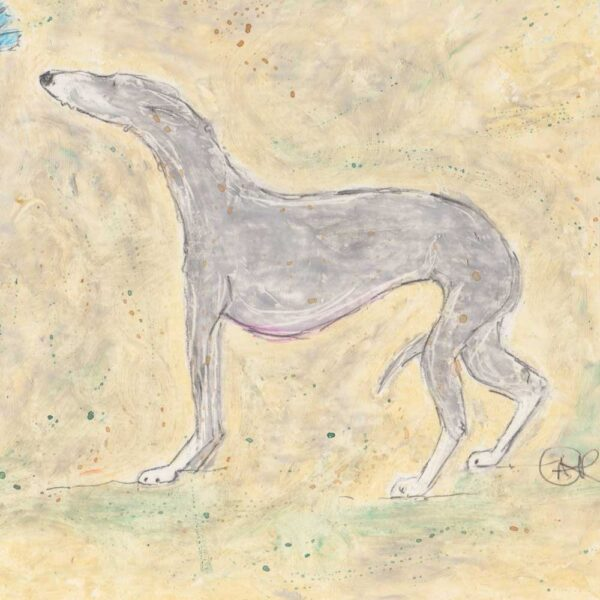 This is an oil pastel picture with watercolour wash of a gentle grey whippet who is timidly investigating a little blue butterfly. This is a side view profile of the whippet with their tail between in their legs. The colours are a background of creams and a soft grey pastel on the whippet with white socks.