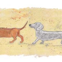 Dachshunds all in a line sniffing each others bums makes u this funny little artwork. At the front is a side profile view of a black and tan dachshund, followed by a tan dachshund then a grey dachshund and finally a brown and tan dachshund at the back. All sniffing each others bums and making great friends. The artwork was created in oil pastels and kohl pencil and is a perfect gift for any dog lover.