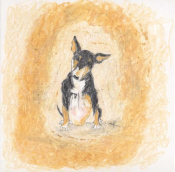 Oil pastel print of a tri coloured English Bull Terrier by artist Amanda Reynolds. The English Bull Terrier is a front on view with head tilted in an inquisitive manner as he stares out to the viewer. The colours are black, white and tan with a little pink belly.