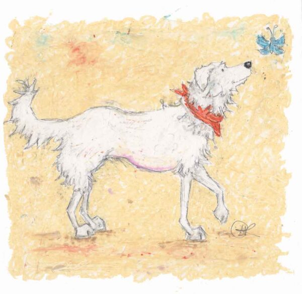 Teddy original oil pastel painting of a Romanian Rescue Dog. A white mixed breed dog with long hair. He wears an orange bandanna and looks at beautiful blue butterfly.