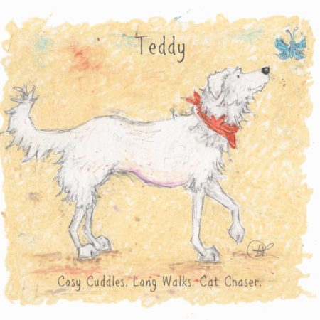 This is a really lovely personalised dog print of a white Romanian Rescue Dog. They wear a neckerchief and look inquisitively at a little blue butterfly. The back ground is a soft cream colour. The personalised dog print features the dogs name and three personality traits can also be added.