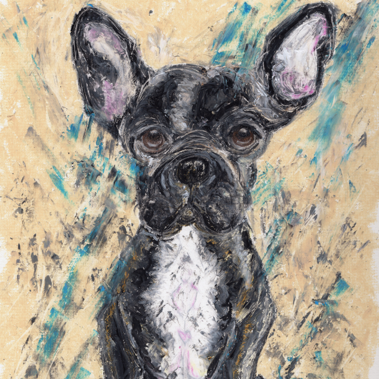 Black Frenchie Dog. Illustrative pet portraits created from photographs in oil pastels for a beautiful textured individual finish.