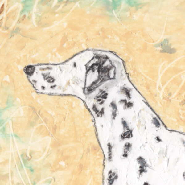 An original Dalmatian Painting set on a cream background created in textured oil paints with ink wash and kohl pencil outline. Part of the dog breeds paintings by dog artist Amanda Reynolds ART