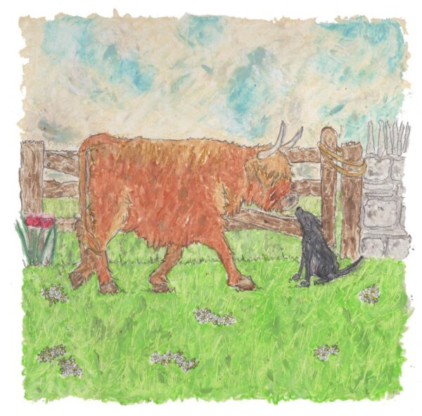 Highland Cow and Black Labrador oil pastel painting by artist Amanda Reynolds depicts a curious highland cow and black Labrador meeting each other in a countryside field with an old wooden gate in the background.